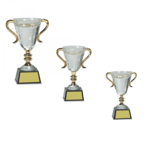 Crystal Cup with Gold Handles
