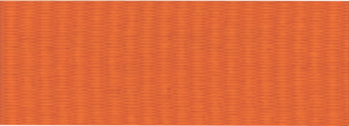 "7/8"" Orange Neck Ribbon with Snap Clip"