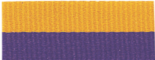 """7/8"""" Purple/Gold Neck Ribbon with Snap Clip"""