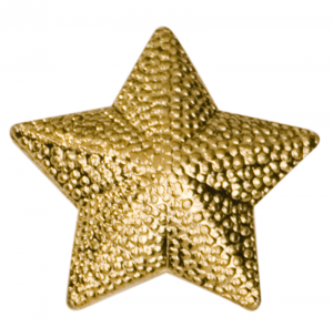 Star Lapel Pin