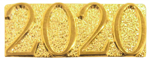Gold 2020 Metal Chenille Letter Insignia