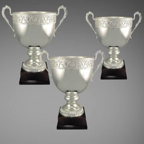 Business Ceremony Trophy Cup