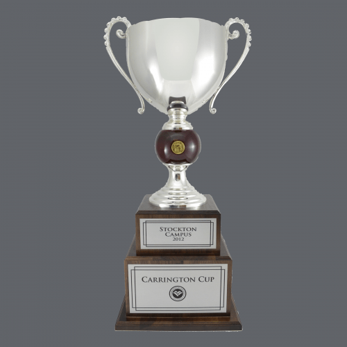 Fire and Ice Trophy Cup
