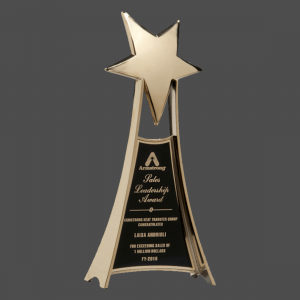 "4 3/4"" x 10 3/4"" Metal Star Trophy in Gold Finish"