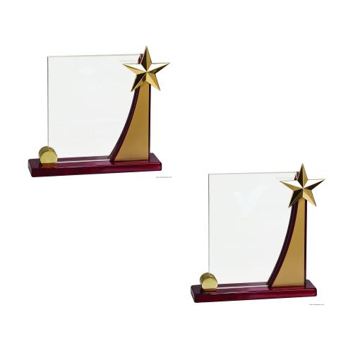 Swooping Rising Star Award