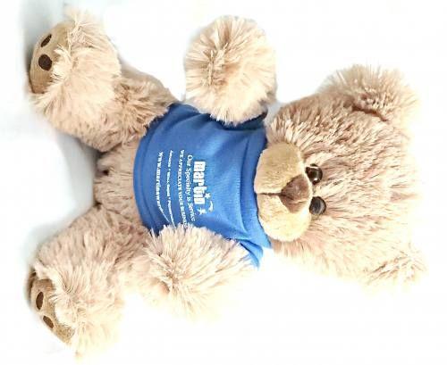 Teddy Bear Martin Awards