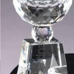 3″ x 6 1/2″ Prism Optical Crystal Glass 1