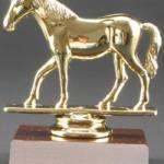 Quarter Horse Trophy 1
