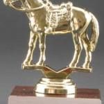 Western Horse Trophy 1