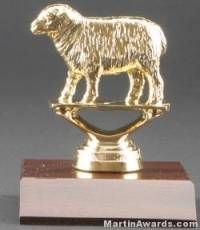 Sheep Trophy