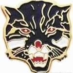 3/4″ Enameled Wildcat Mascot Pin 1