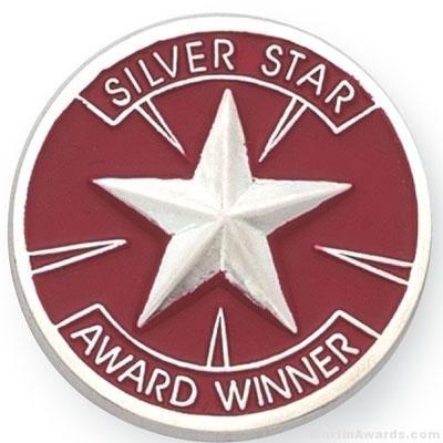 Silver Star Award Lapel Pin