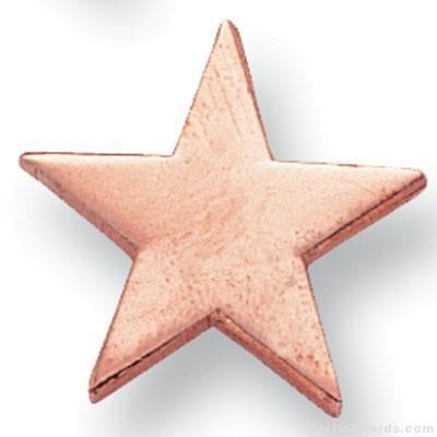 Bronze Star Lapel Pin