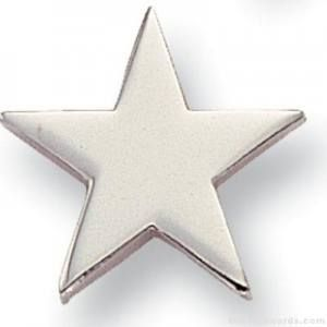 Silver Star Lapel Pin